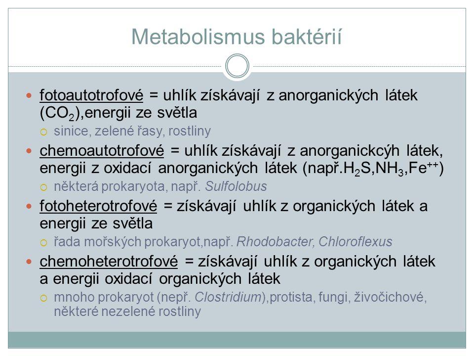 Metabolismus baktérií fotoautotrofové = uhlík získávají z anorganických látek (CO 2 ),energii ze světla  sinice, zelené řasy, rostliny chemoautotrofo