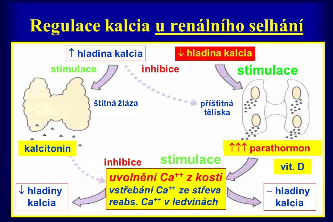 Regulace kalcia u renálního selhání  hladina kalcia  hladina kalcia stimulaceinhibice stimulace štítná žláza příštitná tělíska kalcitonin  parath