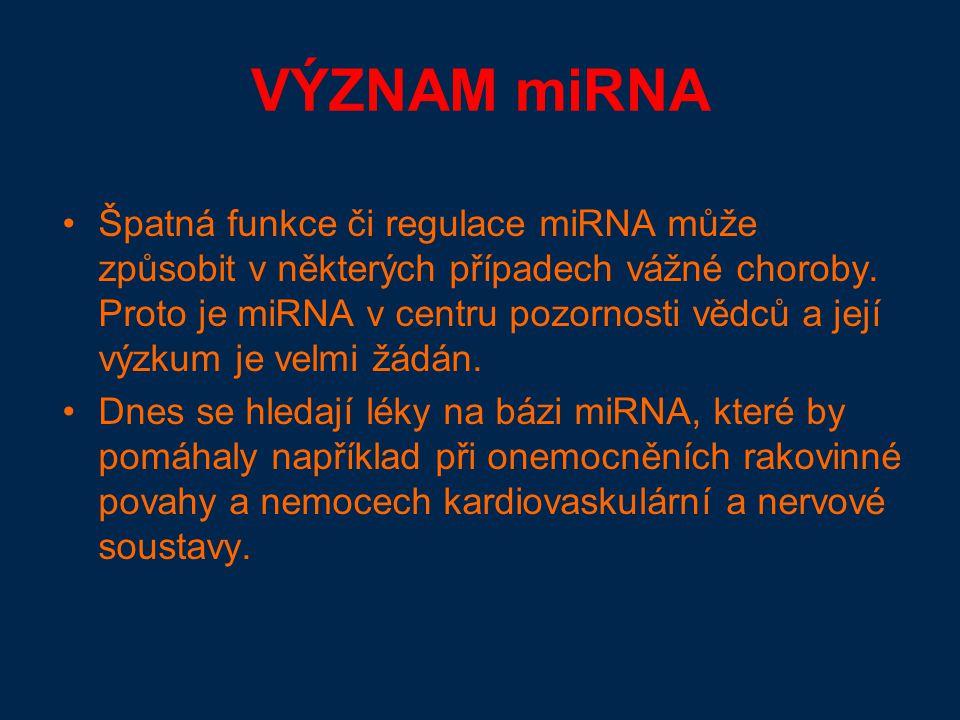 VÝZNAM miRNA Špatná funkce či regulace miRNA může způsobit v některých případech vážné choroby.