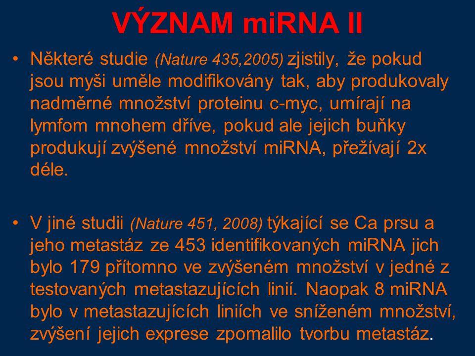 VÝZNAM miRNA II Některé studie (Nature 435,2005) zjistily, že pokud jsou myši uměle modifikovány tak, aby produkovaly nadměrné množství proteinu c-myc, umírají na lymfom mnohem dříve, pokud ale jejich buňky produkují zvýšené množství miRNA, přežívají 2x déle.