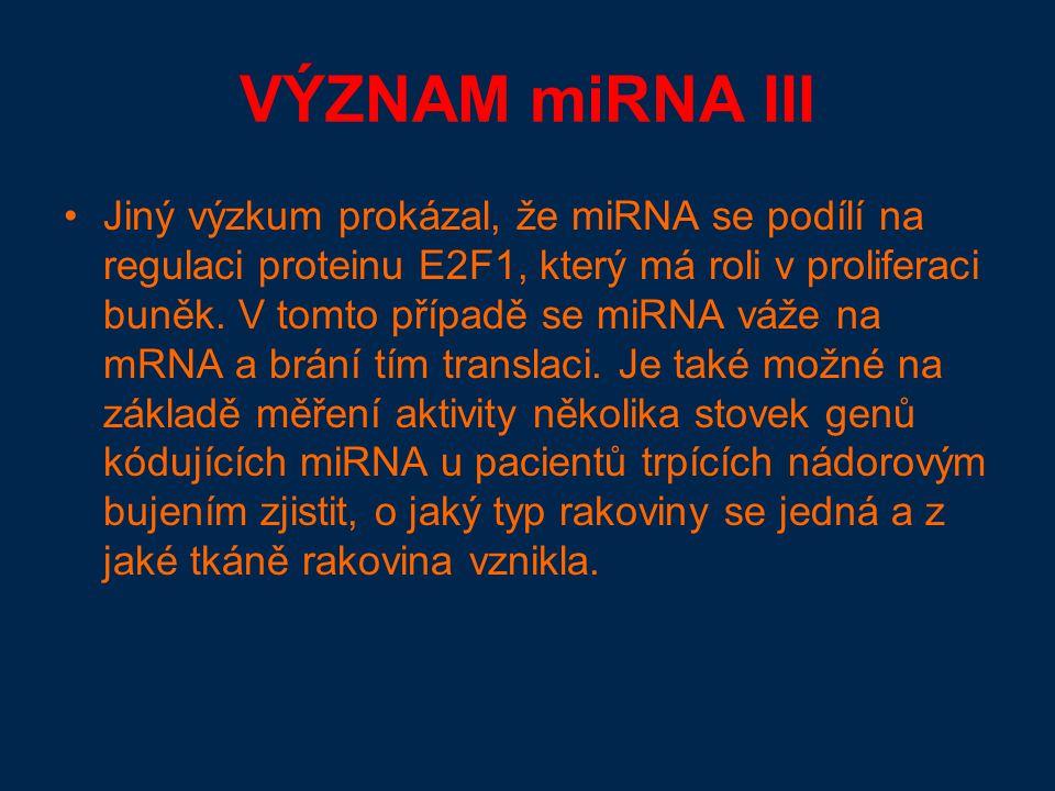 VÝZNAM miRNA III Jiný výzkum prokázal, že miRNA se podílí na regulaci proteinu E2F1, který má roli v proliferaci buněk.