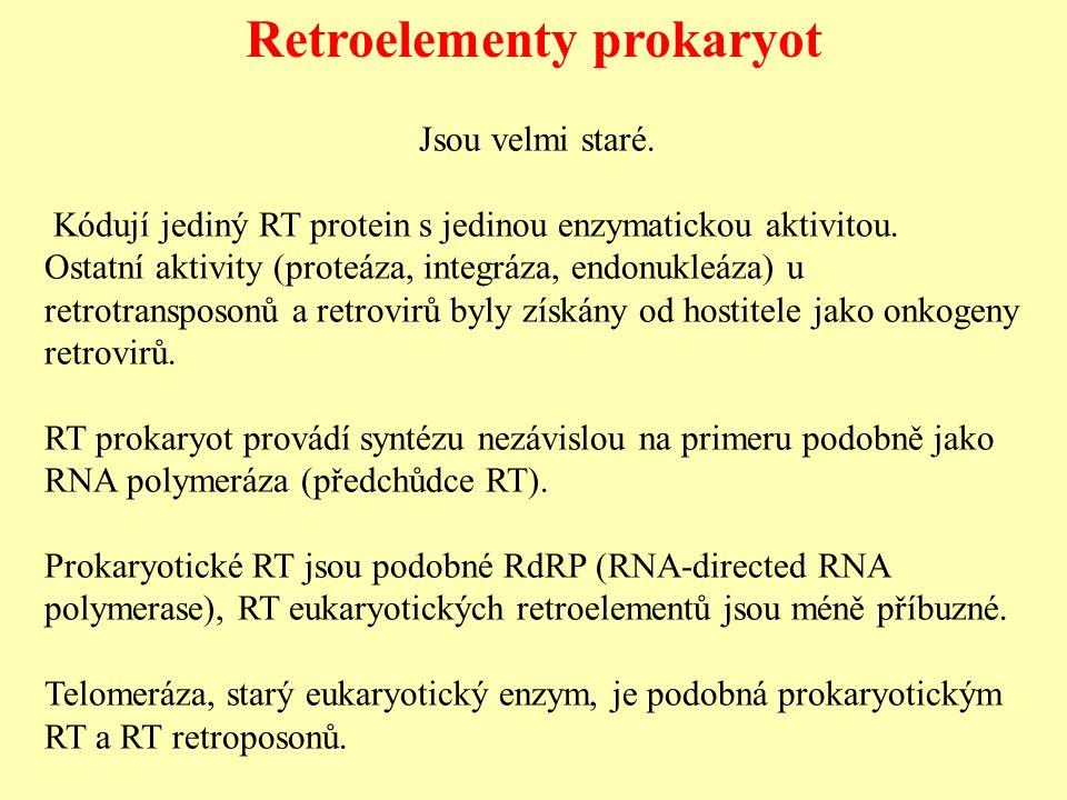 Retroelementy prokaryot Jsou velmi staré.