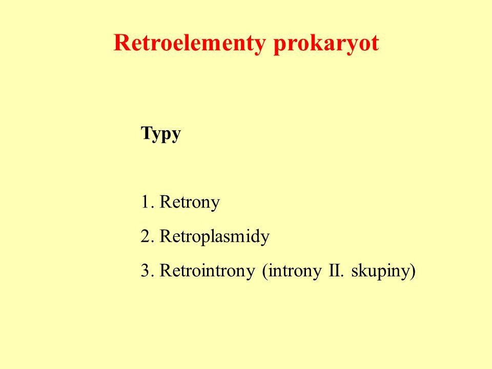 Retroelementy prokaryot Typy 1. Retrony 2. Retroplasmidy 3. Retrointrony (introny II. skupiny)