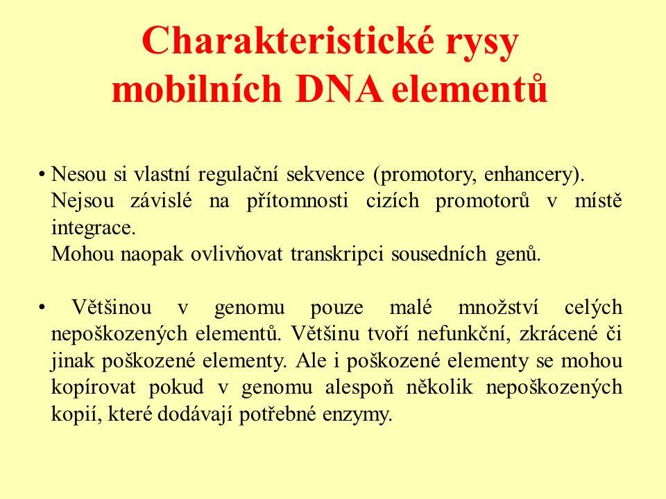 Charakteristické rysy mobilních DNA elementů Nesou si vlastní regulační sekvence (promotory, enhancery).