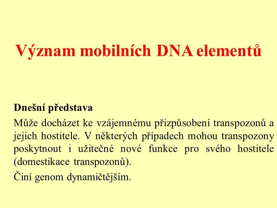 Význam mobilních DNA elementů Dnešní představa Může docházet ke vzájemnému přizpůsobení transpozonů a jejich hostitele.