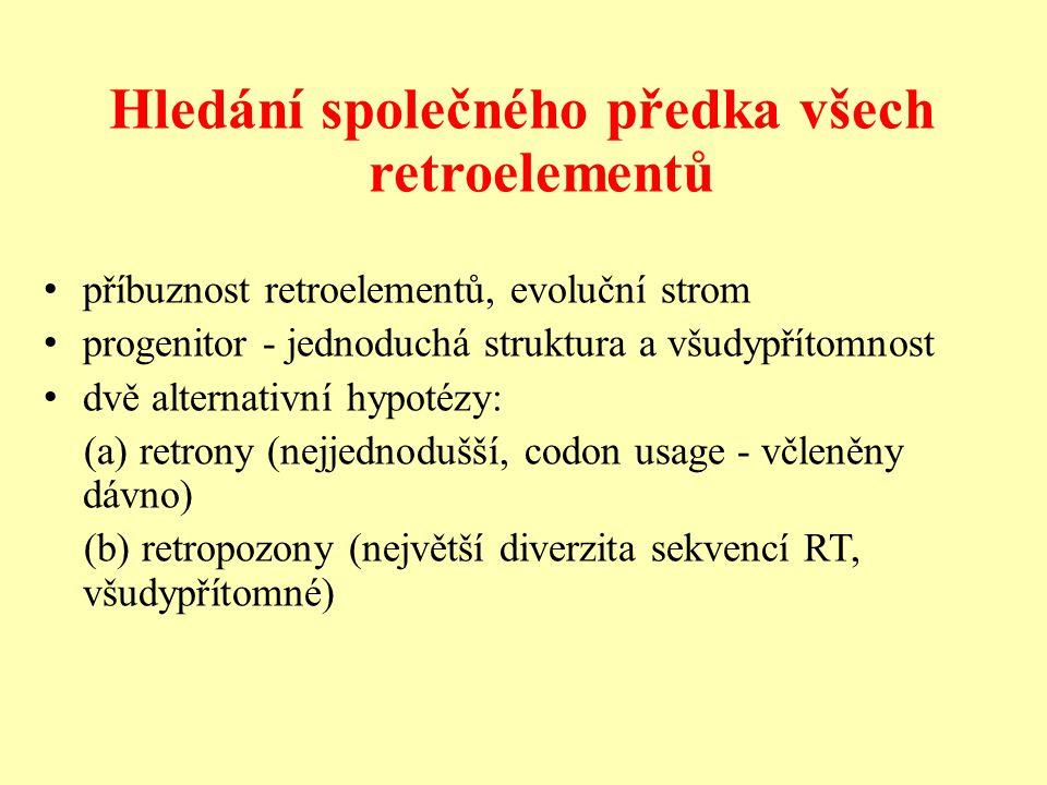 Hledání společného předka všech retroelementů příbuznost retroelementů, evoluční strom progenitor - jednoduchá struktura a všudypřítomnost dvě alternativní hypotézy: (a) retrony (nejjednodušší, codon usage - včleněny dávno) (b) retropozony (největší diverzita sekvencí RT, všudypřítomné)