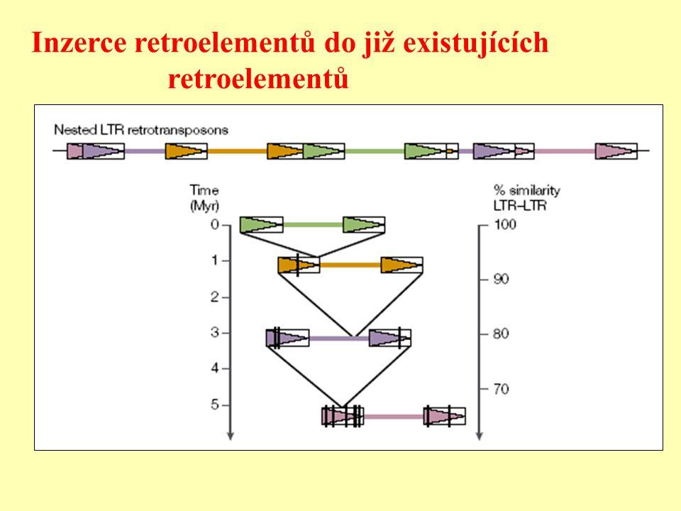 Inzerce retroelementů do již existujících retroelementů