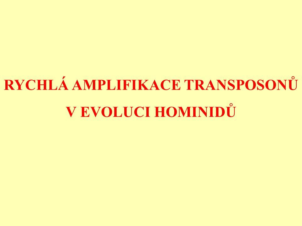 RYCHLÁ AMPLIFIKACE TRANSPOSONŮ V EVOLUCI HOMINIDŮ
