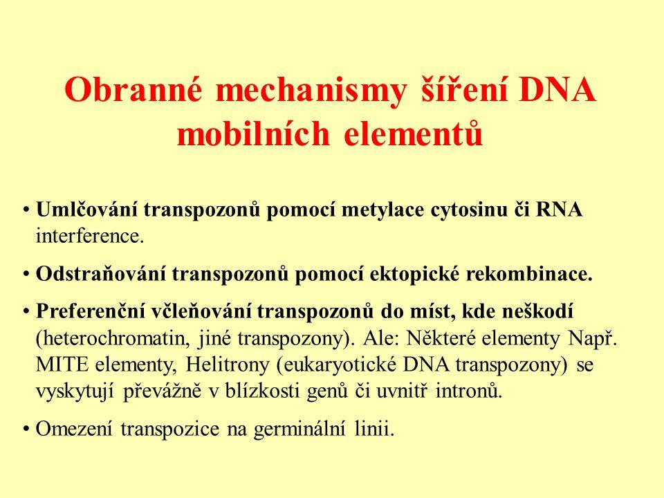 Obranné mechanismy šíření DNA mobilních elementů Umlčování transpozonů pomocí metylace cytosinu či RNA interference.