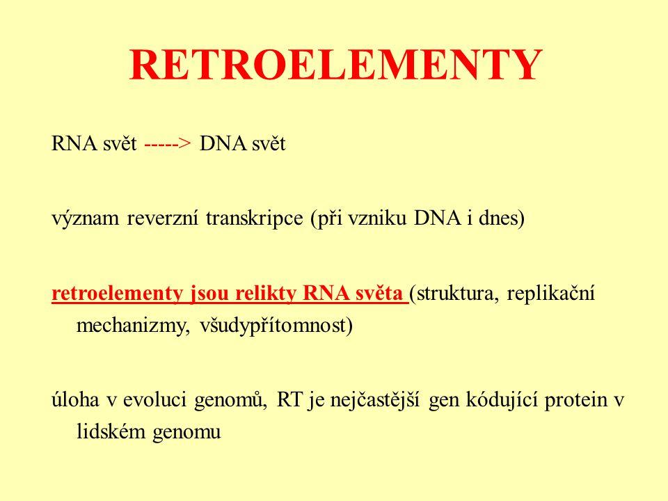 RNA svět -----> DNA svět význam reverzní transkripce (při vzniku DNA i dnes) retroelementy jsou relikty RNA světa (struktura, replikační mechanizmy, všudypřítomnost) úloha v evoluci genomů, RT je nejčastější gen kódující protein v lidském genomu RETROELEMENTY