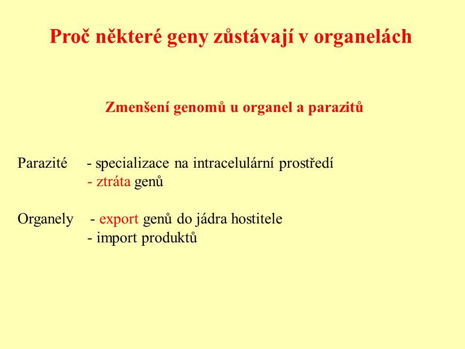 Proč některé geny zůstávají v organelách Zmenšení genomů u organel a parazitů Parazité - specializace na intracelulární prostředí - ztráta genů Organely - export genů do jádra hostitele - import produktů