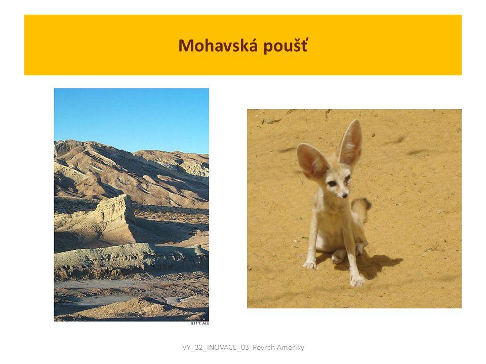  Součástí Mohavské pouště je Údolí smrti :  nachází se ve východní Kalifornii  je to nejsušší, nejteplejší a nejníže položené místo USA a celé Severní Ameriky  3.