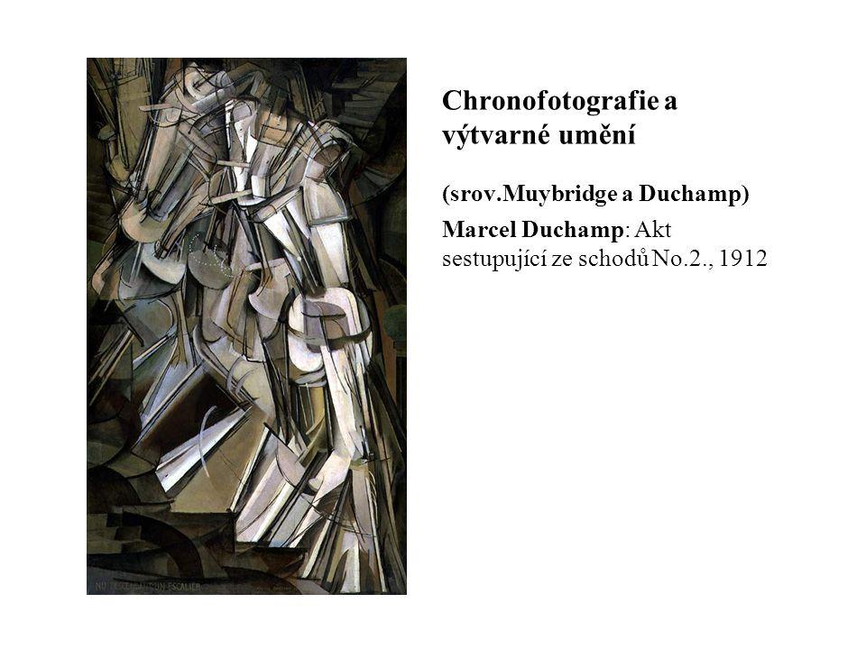 Chronofotografie a výtvarné umění (srov.Muybridge a Duchamp) Marcel Duchamp: Akt sestupující ze schodů No.2., 1912