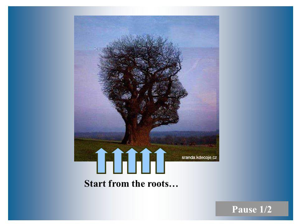 9/2010Přednáška č. 16 Start from the roots… Pause 1/2