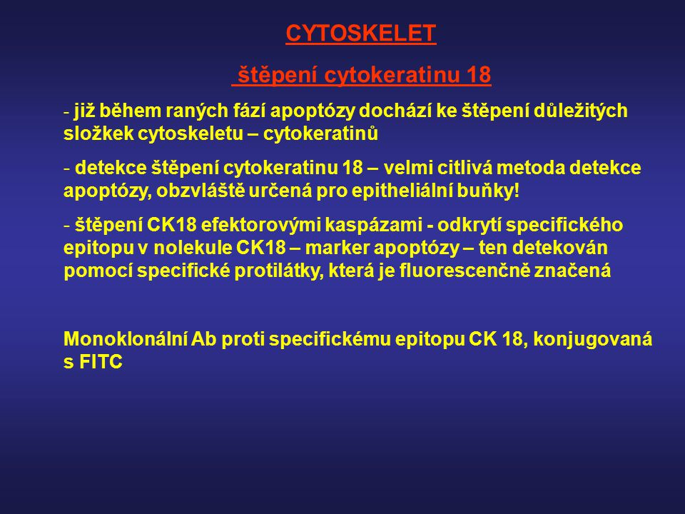 štěpení cytokeratinu 18 - již během raných fází apoptózy dochází ke štěpení důležitých složkek cytoskeletu – cytokeratinů - detekce štěpení cytokerati