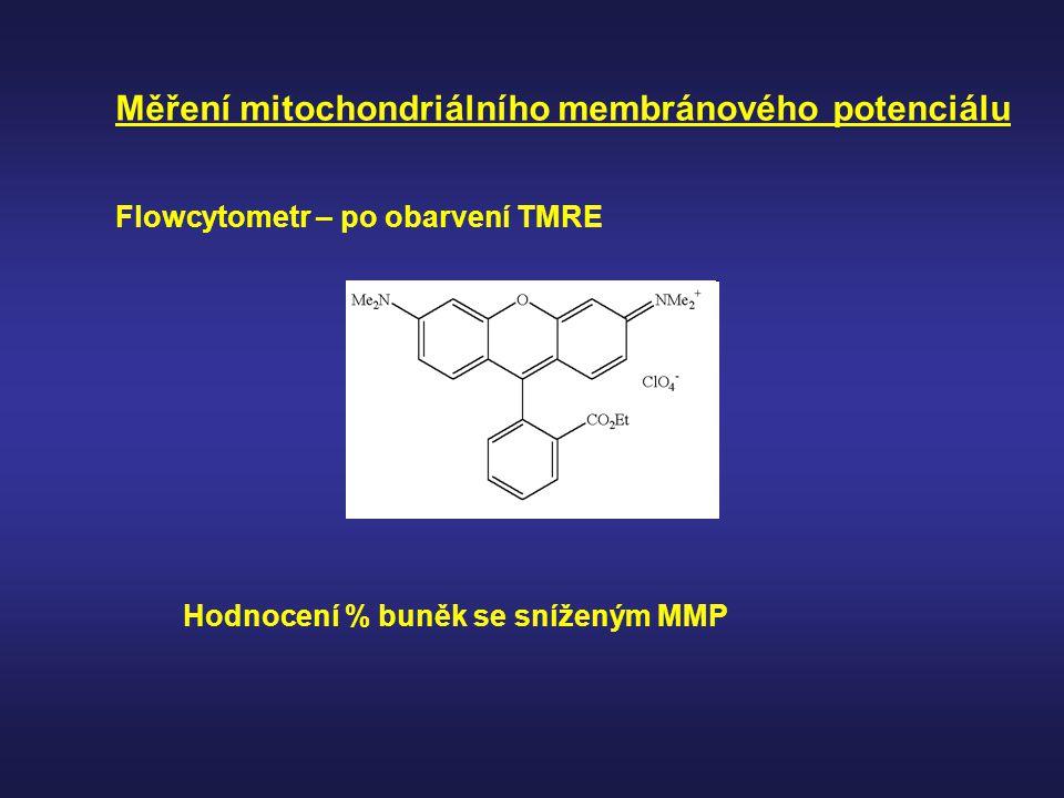 Měření mitochondriálního membránového potenciálu Flowcytometr – po obarvení TMRE Hodnocení % buněk se sníženým MMP
