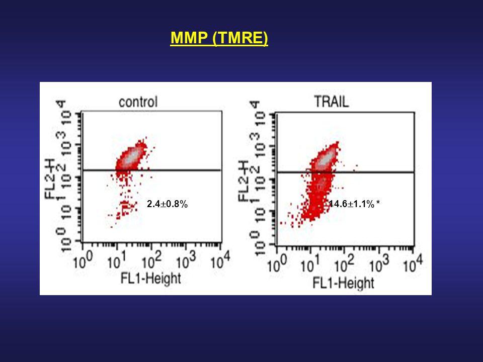 MMP (TMRE) 2.4  0.8%14.6  1.1% *