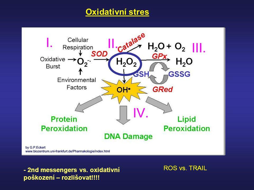 Oxidativní stres - 2nd messengers vs. oxidativní poškození – rozlišovat!!!! ROS vs. TRAIL