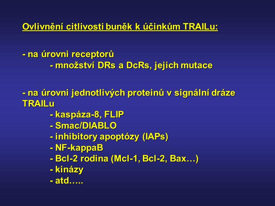 Ovlivnění citlivosti buněk k účinkům TRAILu: - na úrovni receptorů - množství DRs a DcRs, jejich mutace - na úrovni jednotlivých proteinů v signální d