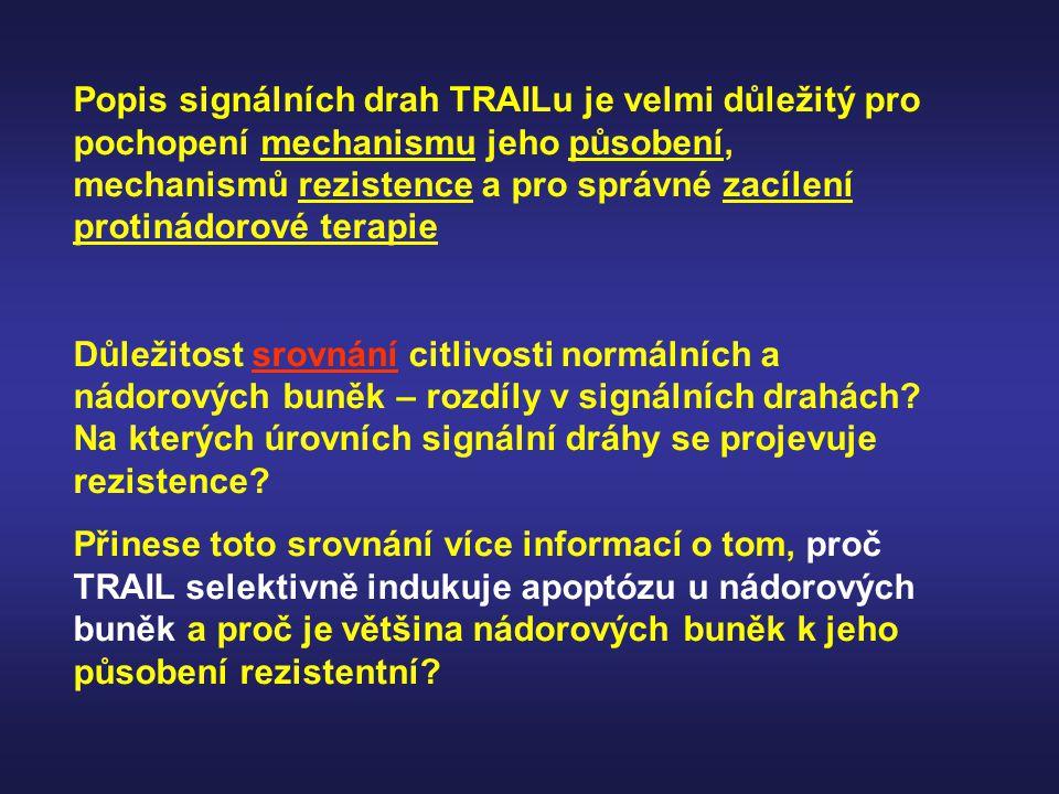 Popis signálních drah TRAILu je velmi důležitý pro pochopení mechanismu jeho působení, mechanismů rezistence a pro správné zacílení protinádorové tera