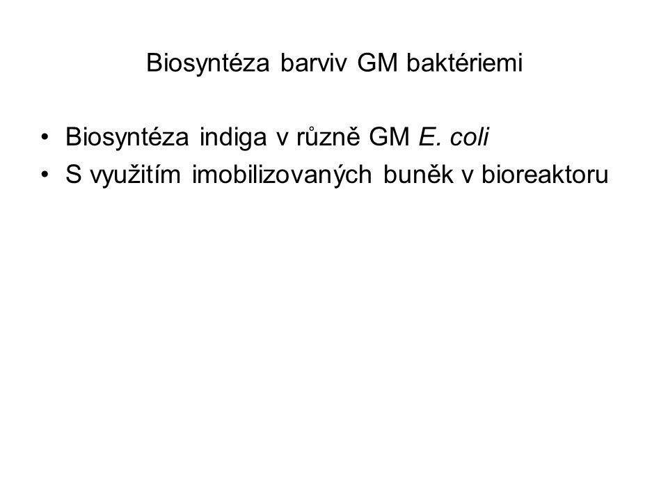 Biosyntéza barviv GM baktériemi Biosyntéza indiga v různě GM E. coli S využitím imobilizovaných buněk v bioreaktoru