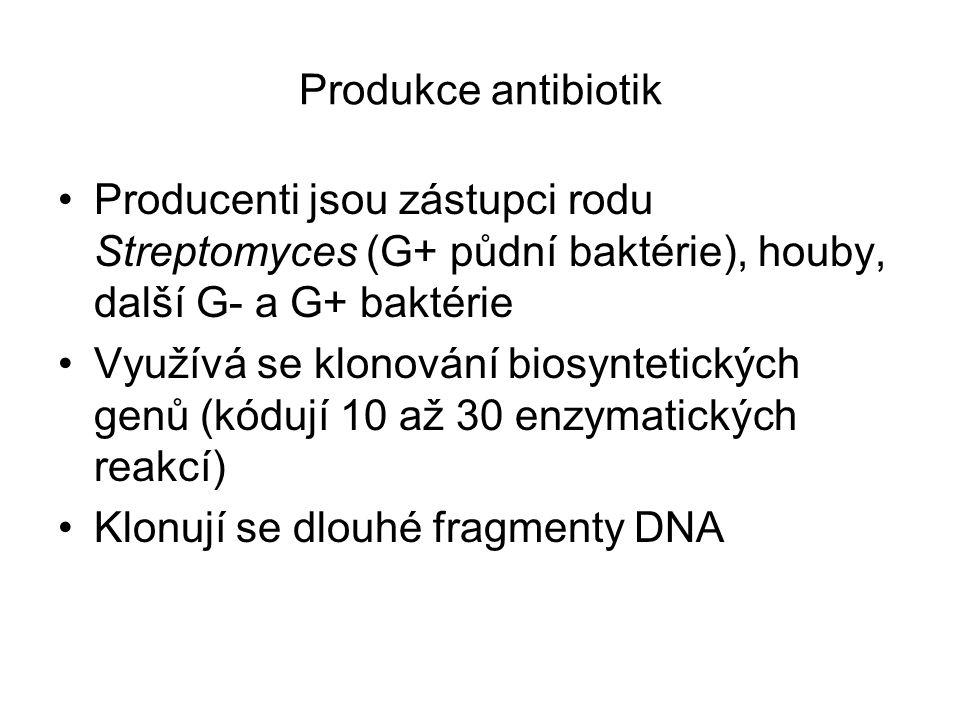 Produkce antibiotik Producenti jsou zástupci rodu Streptomyces (G+ půdní baktérie), houby, další G- a G+ baktérie Využívá se klonování biosyntetických
