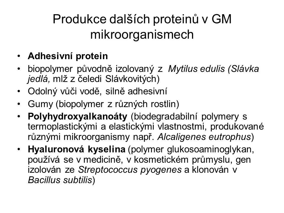 Produkce dalších proteinů v GM mikroorganismech Adhesivní protein biopolymer původně izolovaný z Mytilus edulis (Slávka jedlá, mlž z čeledi Slávkovitý