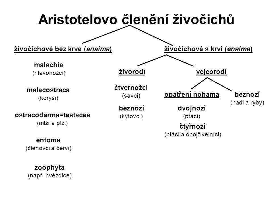 Aristotelovo členění živočichů živočichové bez krve (anaima)živočichové s krví (enaima) malachia (hlavonožci) malacostraca (korýši) ostracoderma=testacea (mlži a plži) entoma (členovci a červi) zoophyta (např.