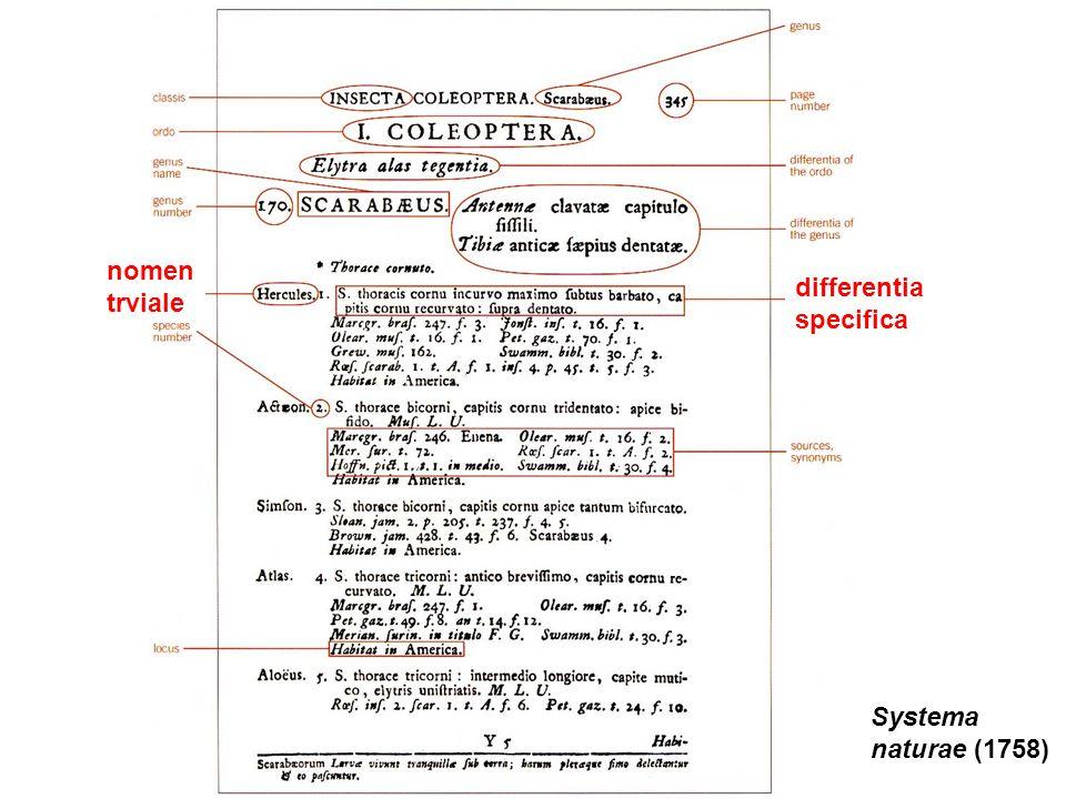 Systema naturae (1758) nomen trviale differentia specifica