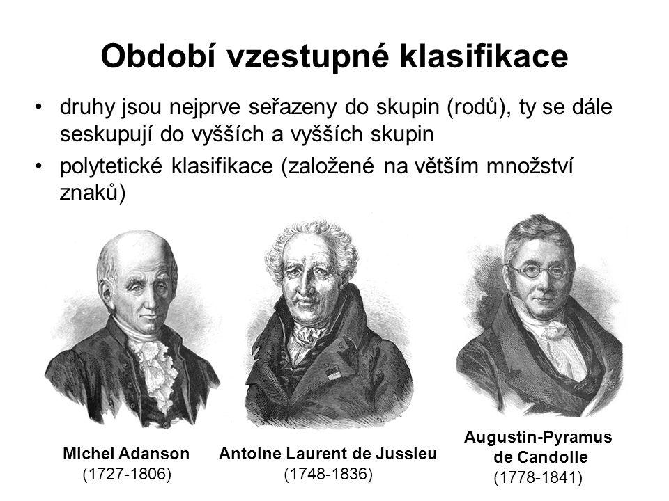 Období vzestupné klasifikace druhy jsou nejprve seřazeny do skupin (rodů), ty se dále seskupují do vyšších a vyšších skupin polytetické klasifikace (založené na větším množství znaků) Michel Adanson (1727-1806) Antoine Laurent de Jussieu (1748-1836) Augustin-Pyramus de Candolle (1778-1841)