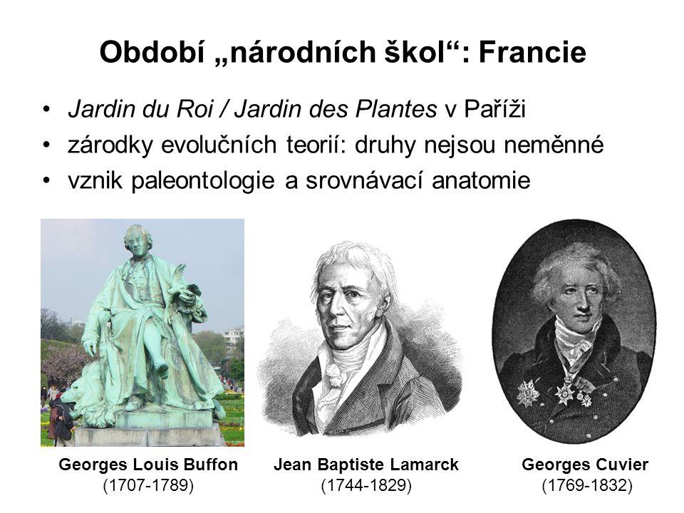 """Období """"národních škol : Francie Jardin du Roi / Jardin des Plantes v Paříži zárodky evolučních teorií: druhy nejsou neměnné vznik paleontologie a srovnávací anatomie Georges Louis Buffon (1707-1789) Jean Baptiste Lamarck (1744-1829) Georges Cuvier (1769-1832)"""