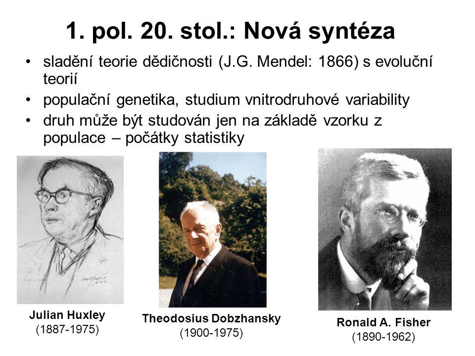 1.pol. 20. stol.: Nová syntéza sladění teorie dědičnosti (J.G.
