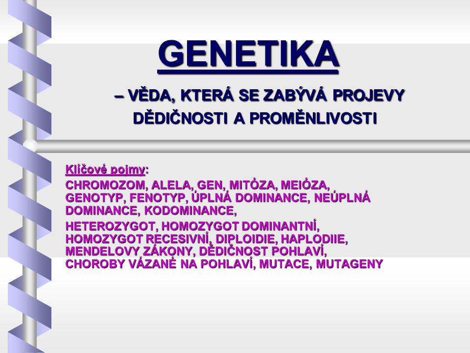 GENETICKÁ INFORMACE - U buněčných organismů je genetická informace uložena na CHROMOZOMECH v buněčném jádře- U buněčných organismů je genetická informace uložena na CHROMOZOMECH v buněčném jádře - Chromozom je tvořen stočeným vláknem chromatinu (z nukleových kyselin – DNA a proteinů)- Chromozom je tvořen stočeným vláknem chromatinu (z nukleových kyselin – DNA a proteinů) - Chromozom – dvě stejné chromatidy (jak tvarem, tak genetickou informací, spojeny centromerou)- Chromozom – dvě stejné chromatidy (jak tvarem, tak genetickou informací, spojeny centromerou) (ke spiralizaci dochází pouze při dělení buněčného jádro, po většinu doby je jádro v nespiralizovaném stavu) (ke spiralizaci dochází pouze při dělení buněčného jádro, po většinu doby je jádro v nespiralizovaném stavu) Pro každá druh je charakteristický počet chromozomů – člověk 2x23 chromozomůPro každá druh je charakteristický počet chromozomů – člověk 2x23 chromozomů