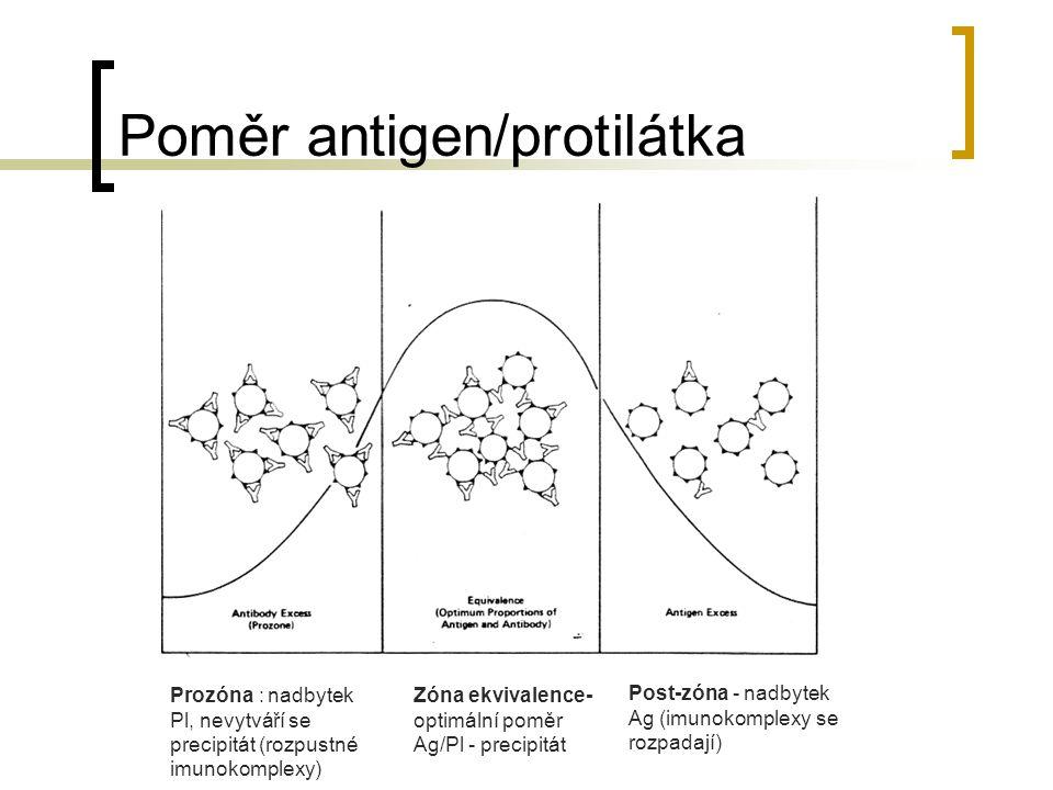 Poměr antigen/protilátka Prozóna : nadbytek Pl, nevytváří se precipitát (rozpustné imunokomplexy) Zóna ekvivalence- optimální poměr Ag/Pl - precipitát Post-zóna - nadbytek Ag (imunokomplexy se rozpadají)