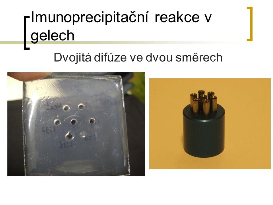 Imunoprecipitační reakce v gelech Dvojitá difúze ve dvou směrech