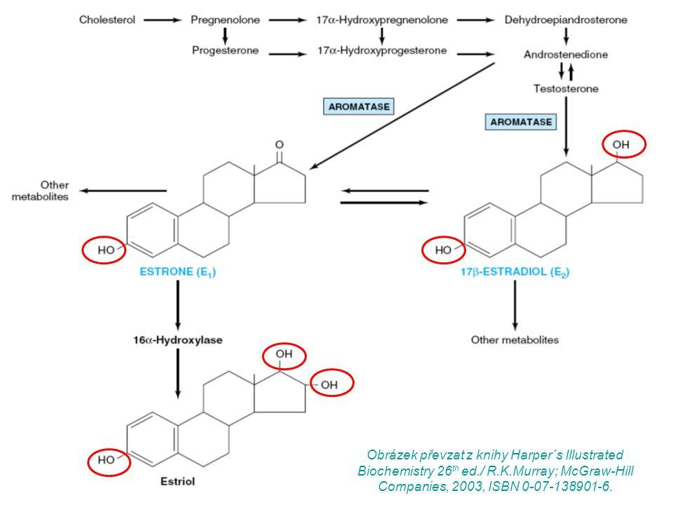 Obrázek převzat z knihy Harper´s Illustrated Biochemistry 26 th ed./ R.K.Murray; McGraw-Hill Companies, 2003, ISBN 0-07-138901-6.