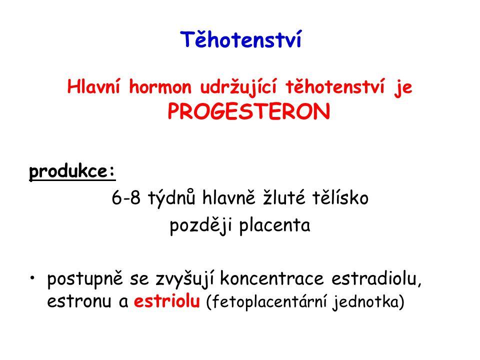 Těhotenství Hlavní hormon udržující těhotenství je PROGESTERON produkce: 6-8 týdnů hlavně žluté tělísko později placenta postupně se zvyšují koncentrace estradiolu, estronu a estriolu (fetoplacentární jednotka)