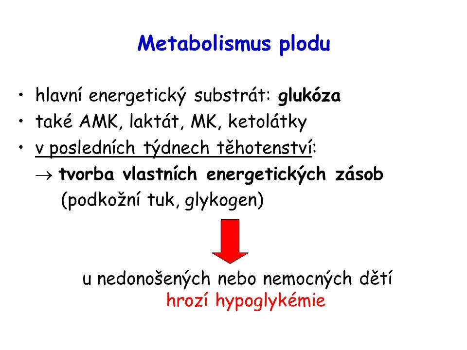 Metabolismus plodu hlavní energetický substrát: glukóza také AMK, laktát, MK, ketolátky v posledních týdnech těhotenství:  tvorba vlastních energetických zásob (podkožní tuk, glykogen) u nedonošených nebo nemocných dětí hrozí hypoglykémie