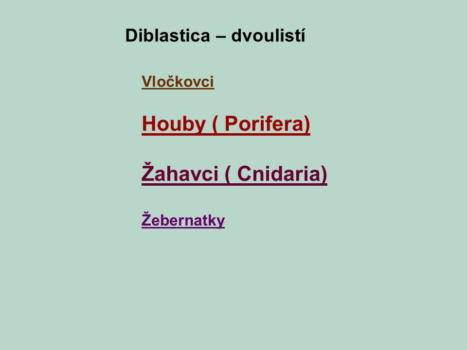 Houby ( Porifera) Žahavci ( Cnidaria) Žebernatky Diblastica – dvoulistí Vločkovci