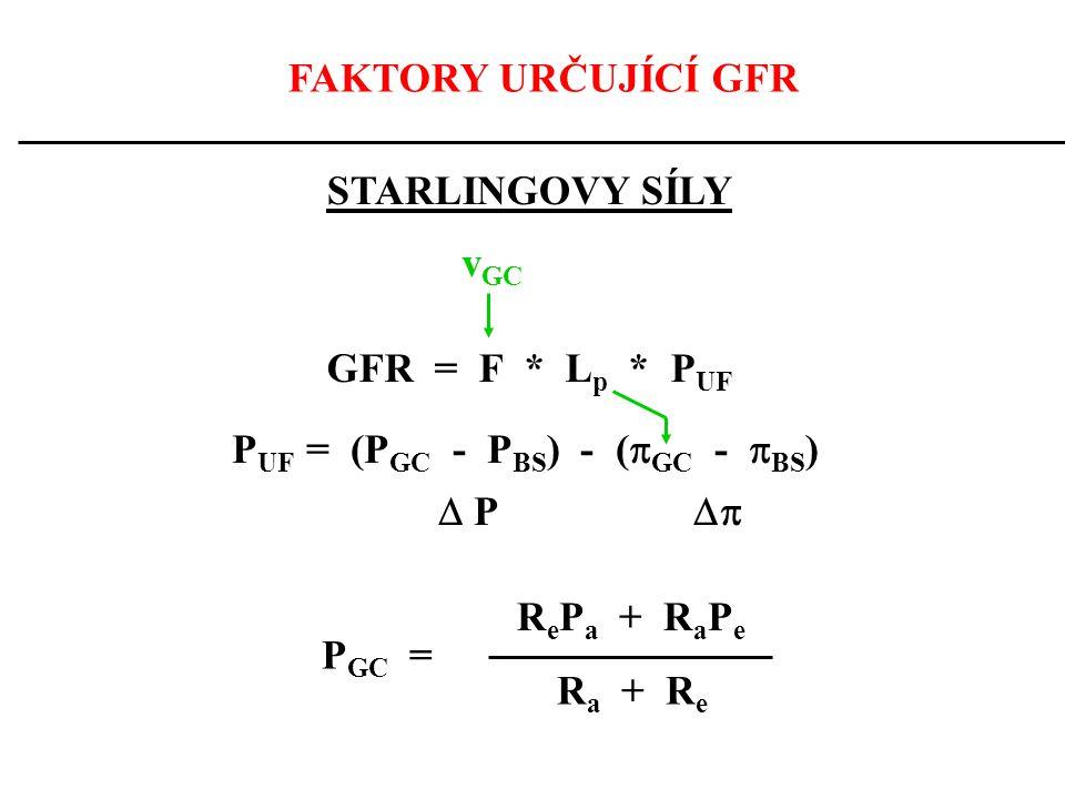 FAKTORY URČUJÍCÍ GFR STARLINGOVY SÍLY GFR = F * L p * P UF v GC P UF = (P GC - P BS ) - (  GC -  BS )  P  R e P a + R a P e R a + R e P GC =