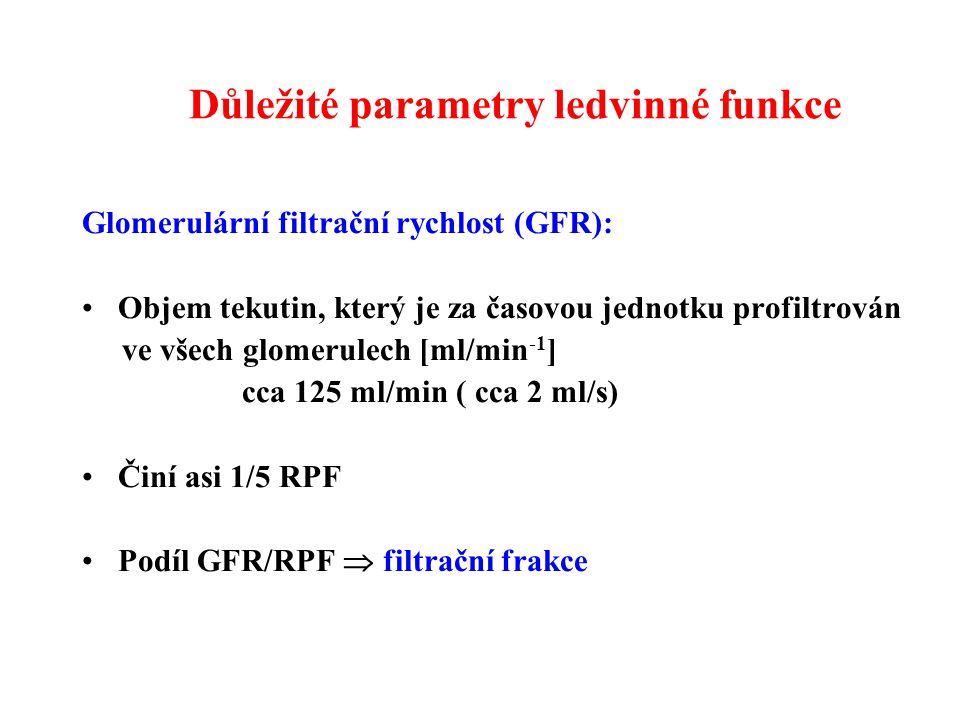 Důležité parametry ledvinné funkce Glomerulární filtrační rychlost (GFR): Objem tekutin, který je za časovou jednotku profiltrován ve všech glomerulech [ml/min -1 ] cca 125 ml/min ( cca 2 ml/s) Činí asi 1/5 RPF Podíl GFR/RPF  filtrační frakce