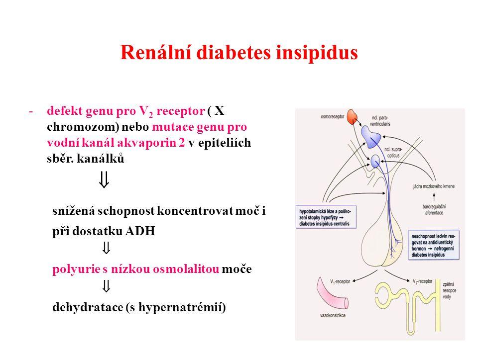Renální diabetes insipidus -defekt genu pro V 2 receptor ( X chromozom) nebo mutace genu pro vodní kanál akvaporin 2 v epiteliích sběr.