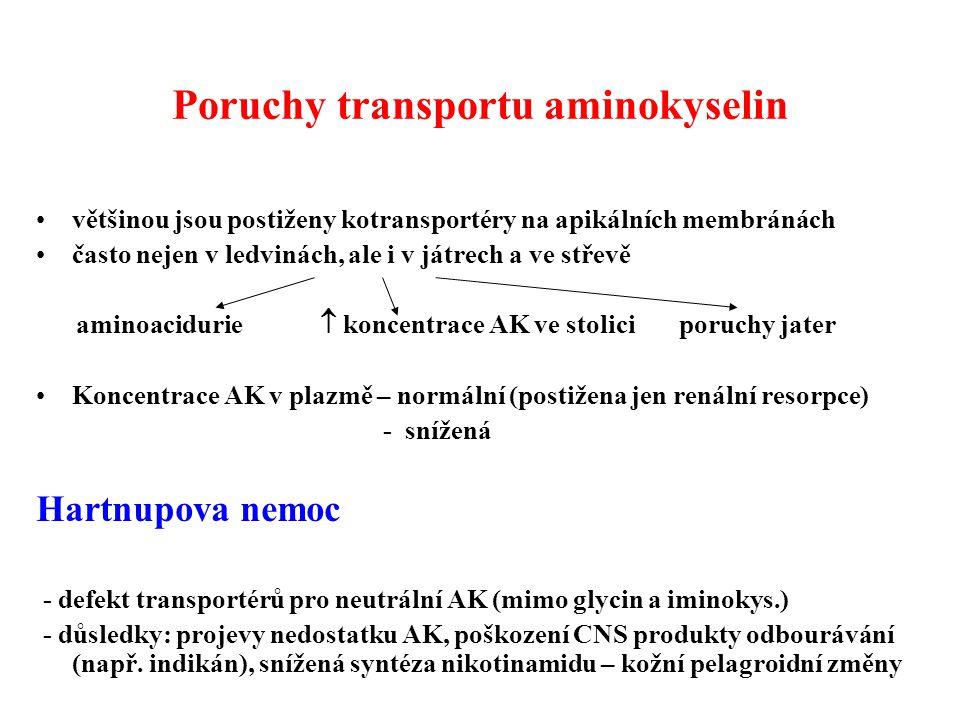 Poruchy transportu aminokyselin většinou jsou postiženy kotransportéry na apikálních membránách často nejen v ledvinách, ale i v játrech a ve střevě aminoacidurie  koncentrace AK ve stolici poruchy jater Koncentrace AK v plazmě – normální (postižena jen renální resorpce) - snížená Hartnupova nemoc - defekt transportérů pro neutrální AK (mimo glycin a iminokys.) - důsledky: projevy nedostatku AK, poškození CNS produkty odbourávání (např.