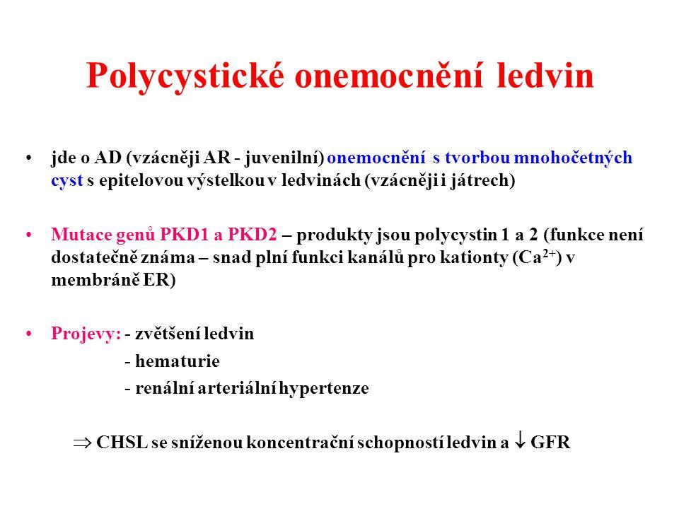 Polycystické onemocnění ledvin jde o AD (vzácněji AR - juvenilní) onemocnění s tvorbou mnohočetných cyst s epitelovou výstelkou v ledvinách (vzácněji i játrech) Mutace genů PKD1 a PKD2 – produkty jsou polycystin 1 a 2 (funkce není dostatečně známa – snad plní funkci kanálů pro kationty (Ca 2+ ) v membráně ER) Projevy: - zvětšení ledvin - hematurie - renální arteriální hypertenze  CHSL se sníženou koncentrační schopností ledvin a  GFR