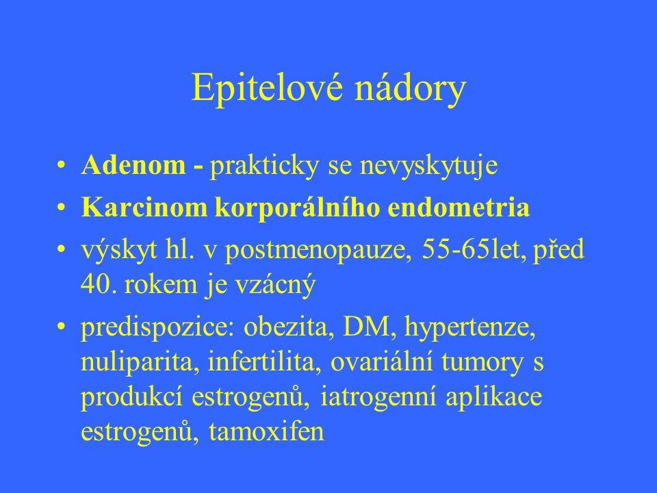 Epitelové nádory Adenom - prakticky se nevyskytuje Karcinom korporálního endometria výskyt hl. v postmenopauze, 55-65let, před 40. rokem je vzácný pre