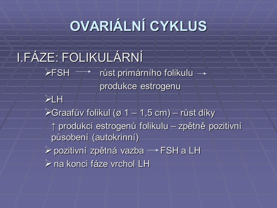 OVARIÁLNÍ CYKLUS I.FÁZE: FOLIKULÁRNÍ  FSH růst primárního folikulu produkce estrogenu  LH  Graafův folikul (ø 1 – 1,5 cm) – růst díky ↑ produkci es