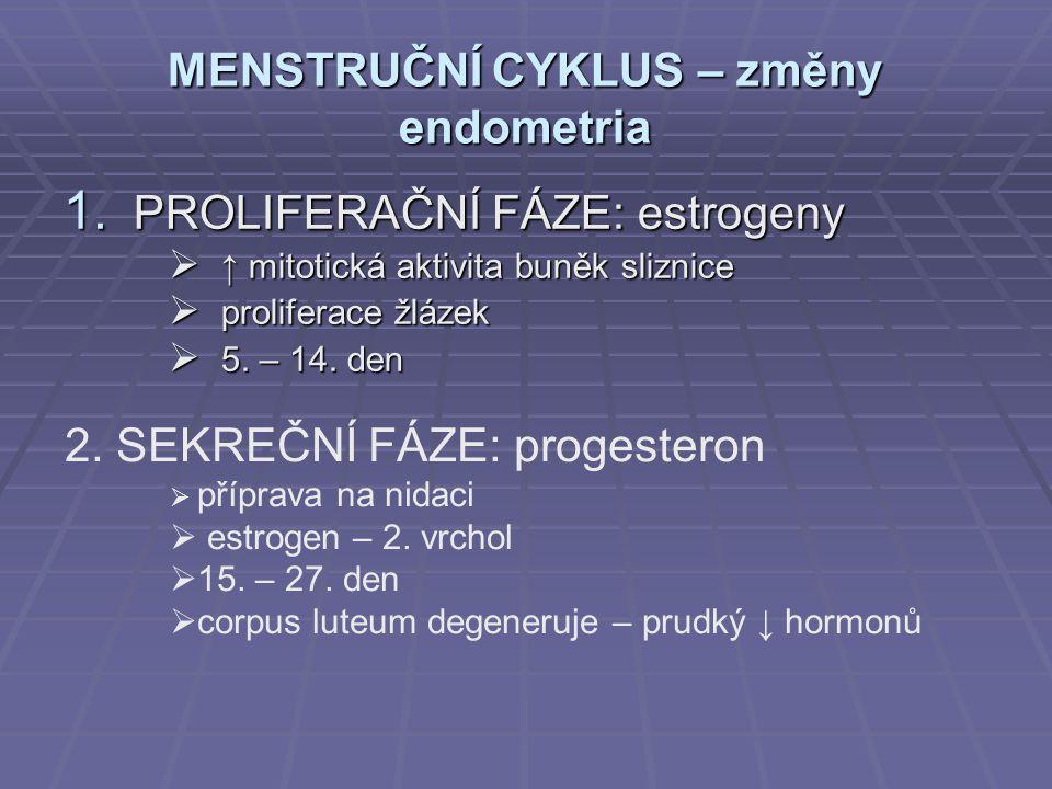 MENSTRUČNÍ CYKLUS – změny endometria 1. PROLIFERAČNÍ FÁZE: estrogeny  ↑ mitotická aktivita buněk sliznice  proliferace žlázek  5. – 14. den 2. SEKR