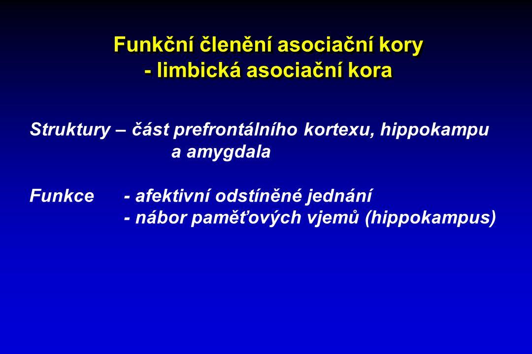 Funkční členění asociační kory - limbická asociační kora Struktury – část prefrontálního kortexu, hippokampu a amygdala Funkce - afektivní odstíněné j