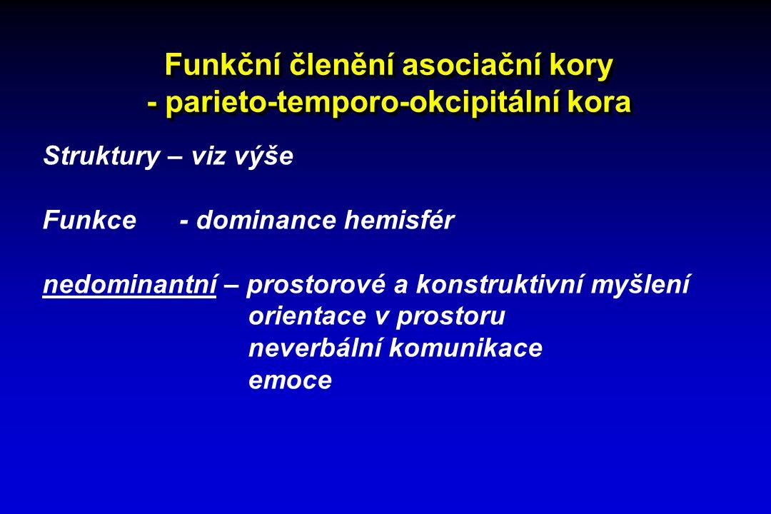 Funkční členění asociační kory - parieto-temporo-okcipitální kora Struktury – viz výše Funkce - dominance hemisfér nedominantní – prostorové a konstru