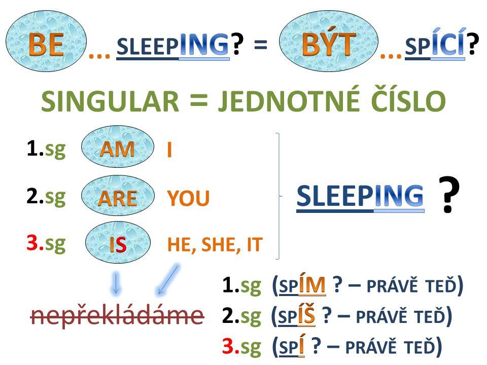 WE THEY YOU2.pl nepřekládáme 1.pl 3.pl 1.pl 3.pl 2.pl PLURAL = MNOŽNÉ ČÍSLO ? =...